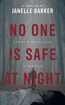 Book - NO ONE IS SAFE AT NIGHT